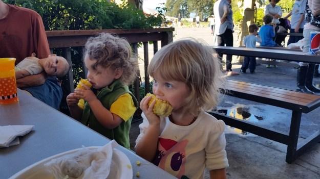 The Pumpkin Patch - corn