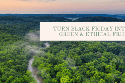Ethical Black Friday Deals