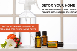 Detox Your Home & SAVE!