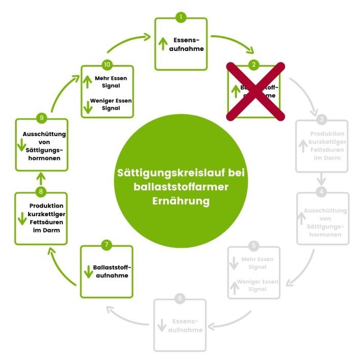 Abnehmen mit Ballaststoffen: Sättigungskreislauf Ungesund