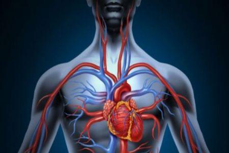 5 Maneras de mejorar la circulación sanguínea y por qué debe