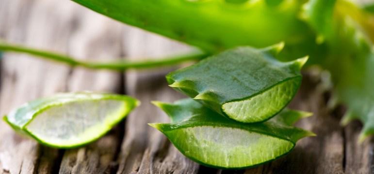 Bere Aloe vera per 90 giorni benefici | Naturalmente