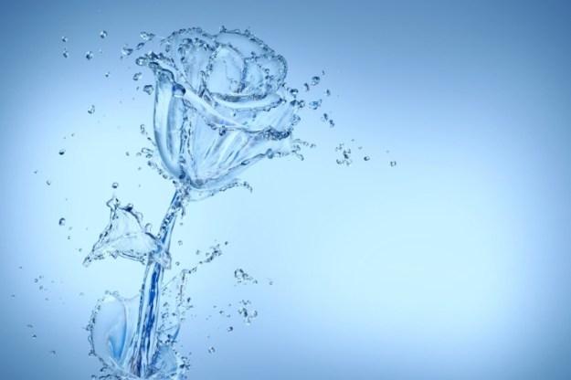 hydrolaty