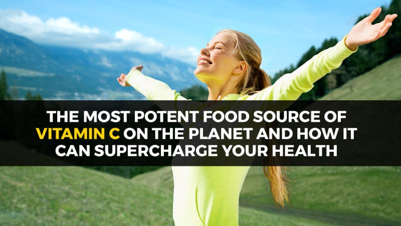 Potent Food Source of Vitamin C