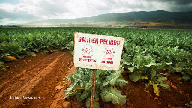 Dicamba herbicide