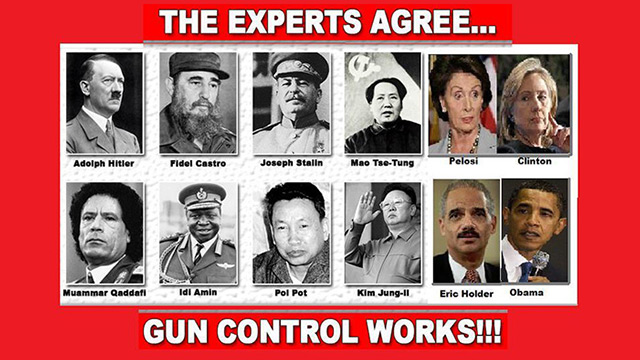 Image result for gun control