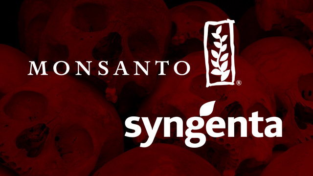 possible monsanto and syngenta merger