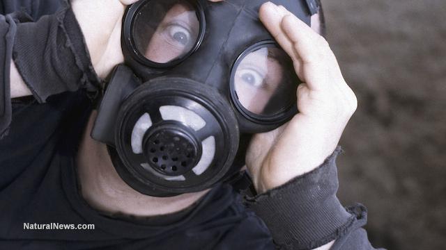fukushima,radiation,nuclear power
