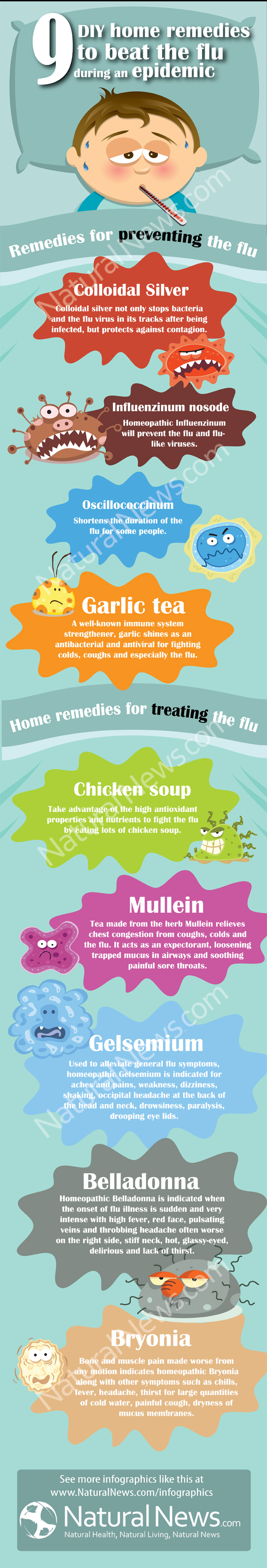 DIY Home Remedies to beat the Flu [Infographic] | ecogreenlove