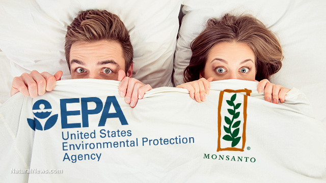 Image: Monsanto caught colluding with EPA in Roundup cancer cover-up