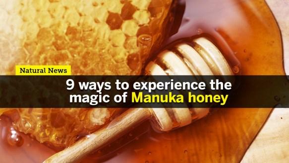 Image: Nine ways to experience the magic of Manuka honey