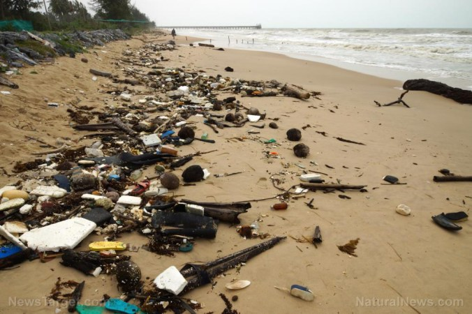 Image: Raw human sewage all over the beaches of California is the perfect metaphor for the failure of liberalism