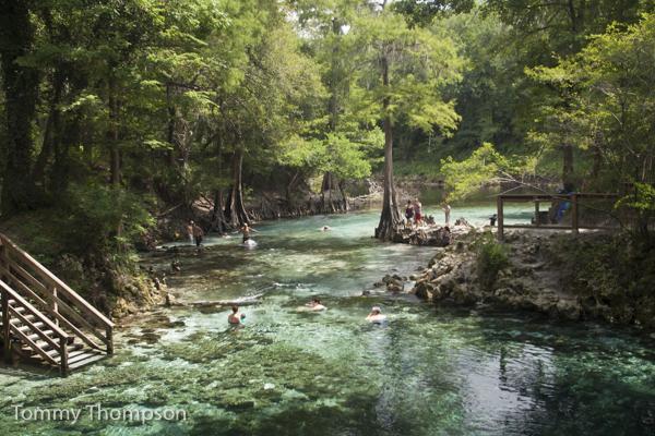 3-day trip north florida landscapes