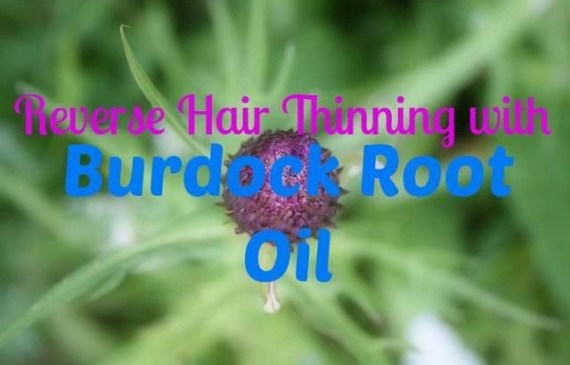 reverse-hair-thinning-with-burdock-root-oil