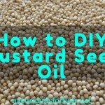 How to Make Your Own Mustard Oil