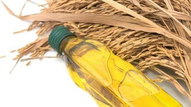 How to Create an Enriching Mask for Dry Hair with Rice Bran oil