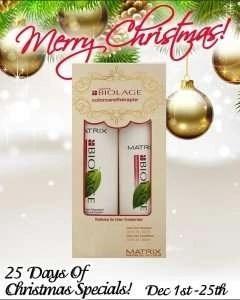 Matrix Biolage Colour Care Shampoo & Conditioner Duo