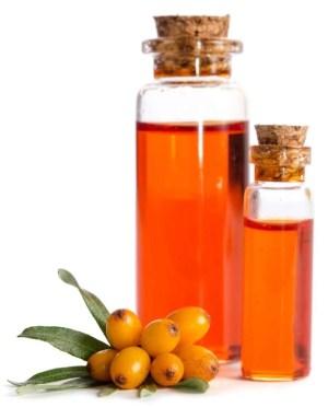 Sea buckthorn oil for hair