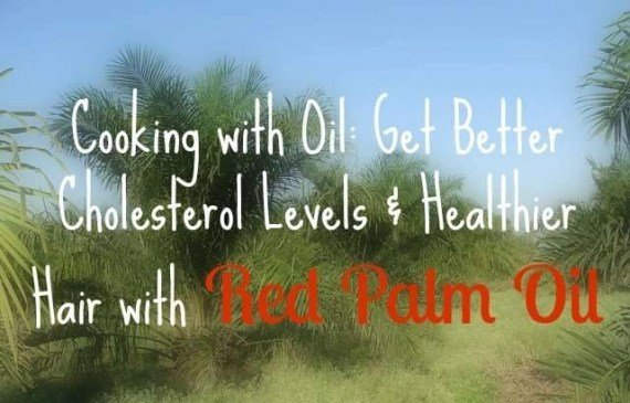 better-cholesterol-levels-and-hair-with-red-palm-oil