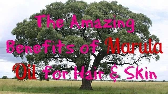 the amazing benefits of marula oil for hair & skin