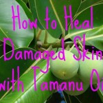 How to Heal Damaged Skin with Tamanu Oil