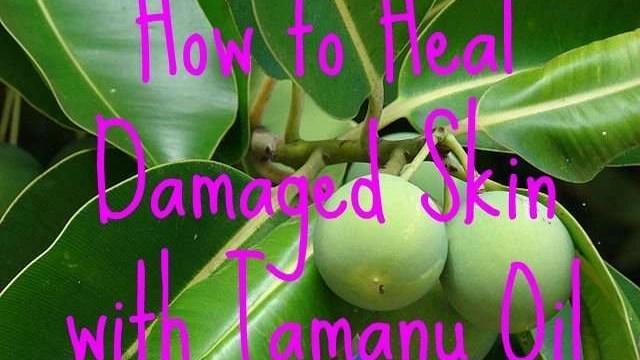 how-to-heal-damaged-skin-with-tamanu-oil