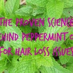 The Proven Science Behind Peppermint Oil for Hair Loss Issues