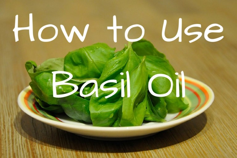 how-to-use-basil-oil