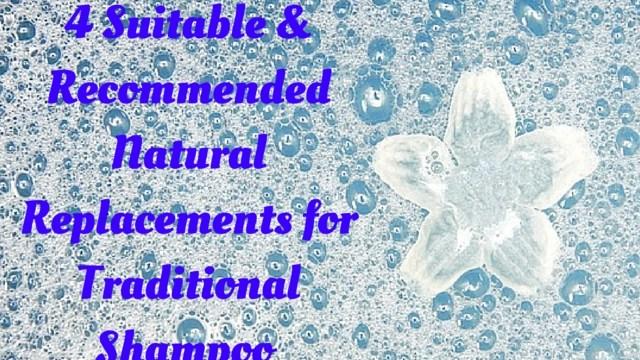 4-natural-alternatives-to-shampoo