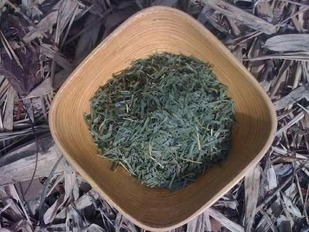 Bamboo Loose Leaf Tea