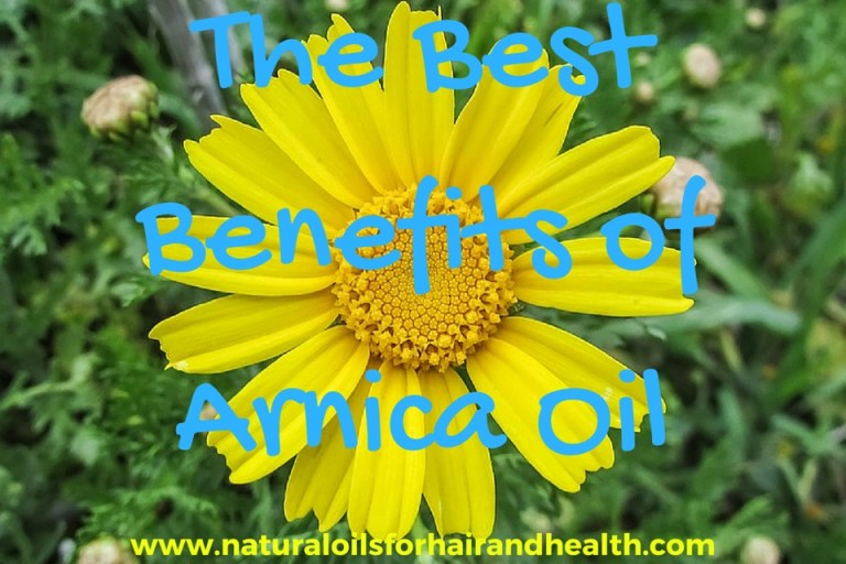 benefits-of-arnica-oil
