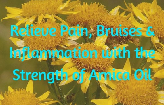 relieve-pain-bruises-and-inflammation-with-arnica-oil