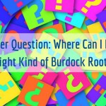 Reader Question: Where Can I Find the Right Kind of Burdock Oil?