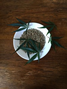 hemp seed benefits
