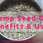 Hemp Seed Oil Benefits & Uses