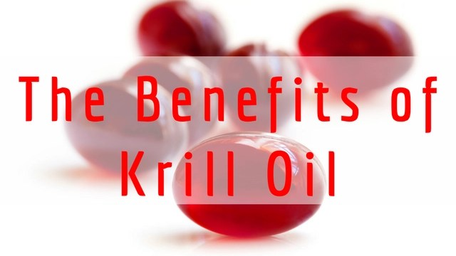 What Are the Benefits of Krill Oil