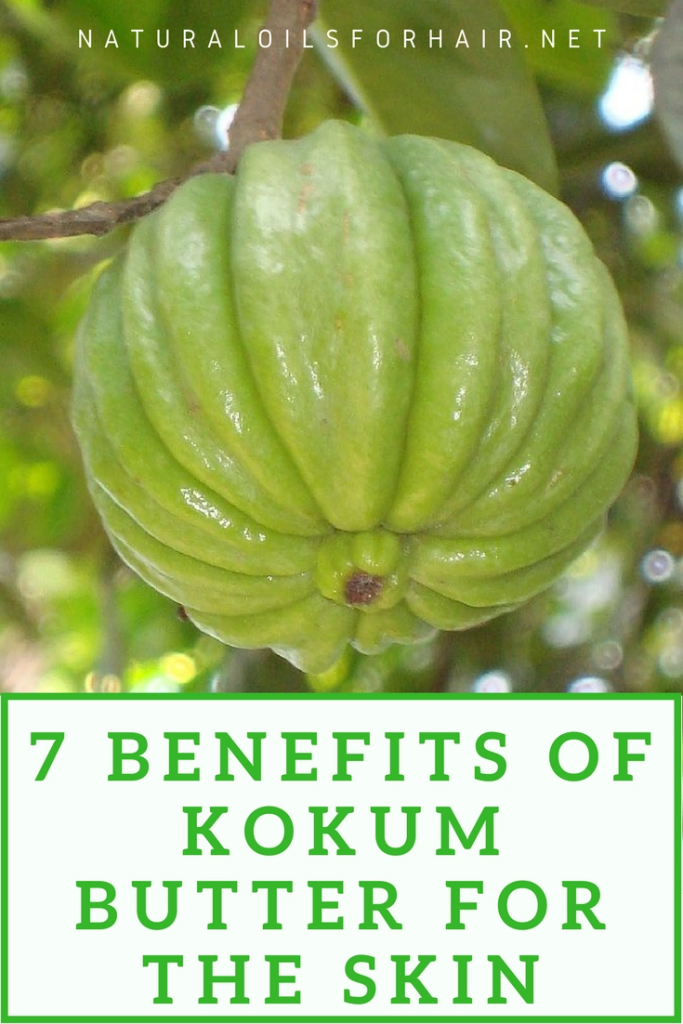 7 Benefits of Kokum Butter for the Skin
