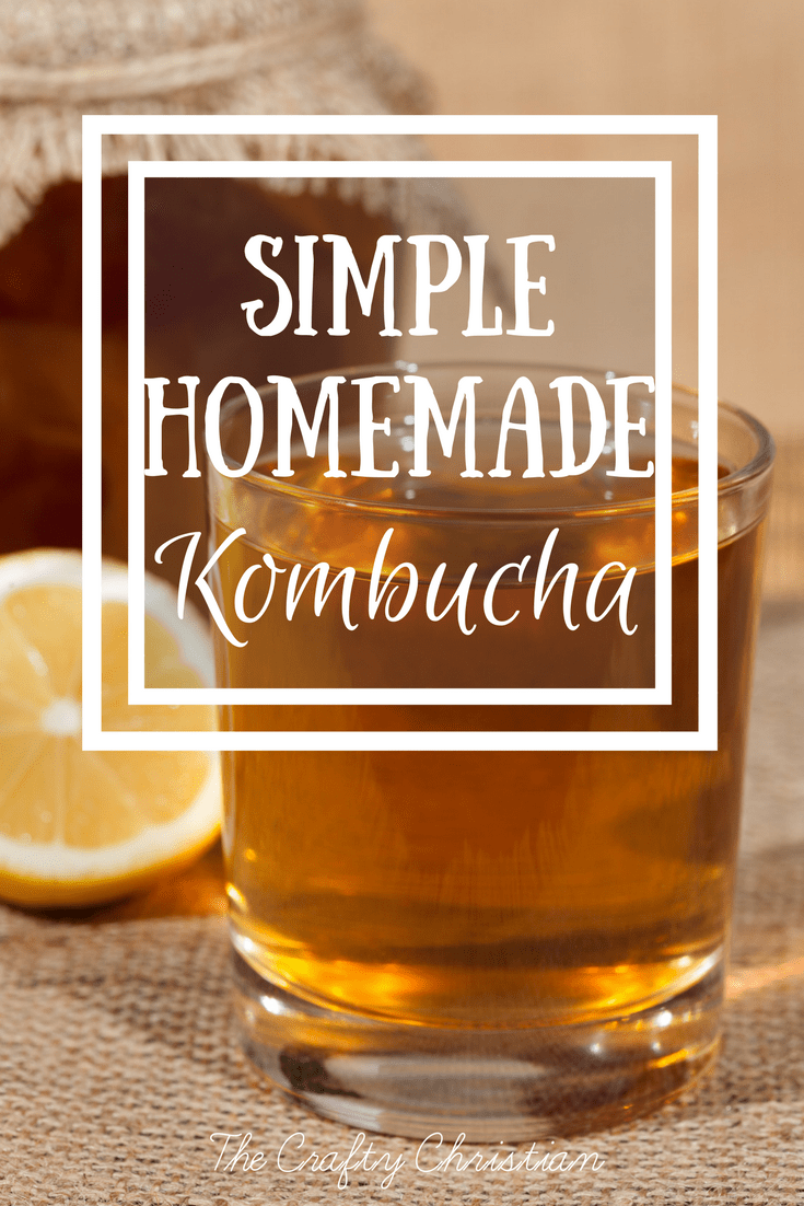 Kombucha has such great bacteria in it for healing leaky gut, but it's so expensive... Not when you make it at home, y'all can seriously make it for PENNIES! And so tasty, take my word for it! ;)