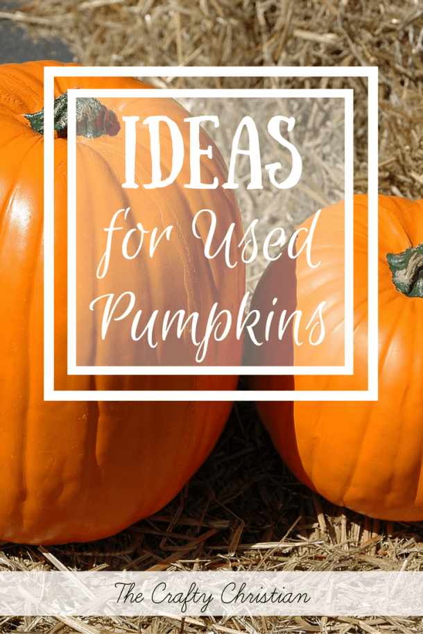 Now that Halloween is here, what do you do with all of those pumpkins that you bought?  I hate the idea of just throwing them away, so here are some ideas for those used pumpkins!