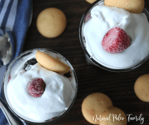I'm always looking for new healthy desserts to serve at holiday get togethers. With all of the sweets during this time of year, it's so easy to overdo it on the sugar. This healthy holiday trifle is low in sugar and is also gluten free and dairy free. It's the perfect light dessert for your family dinners!