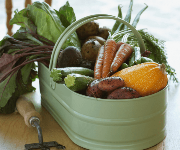 metal basket full of veggies