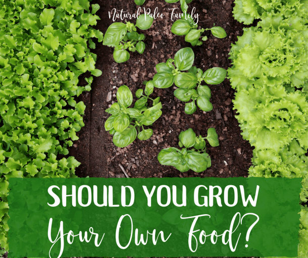 Should You Grow Your Own Food? Benefits of a Home Garden