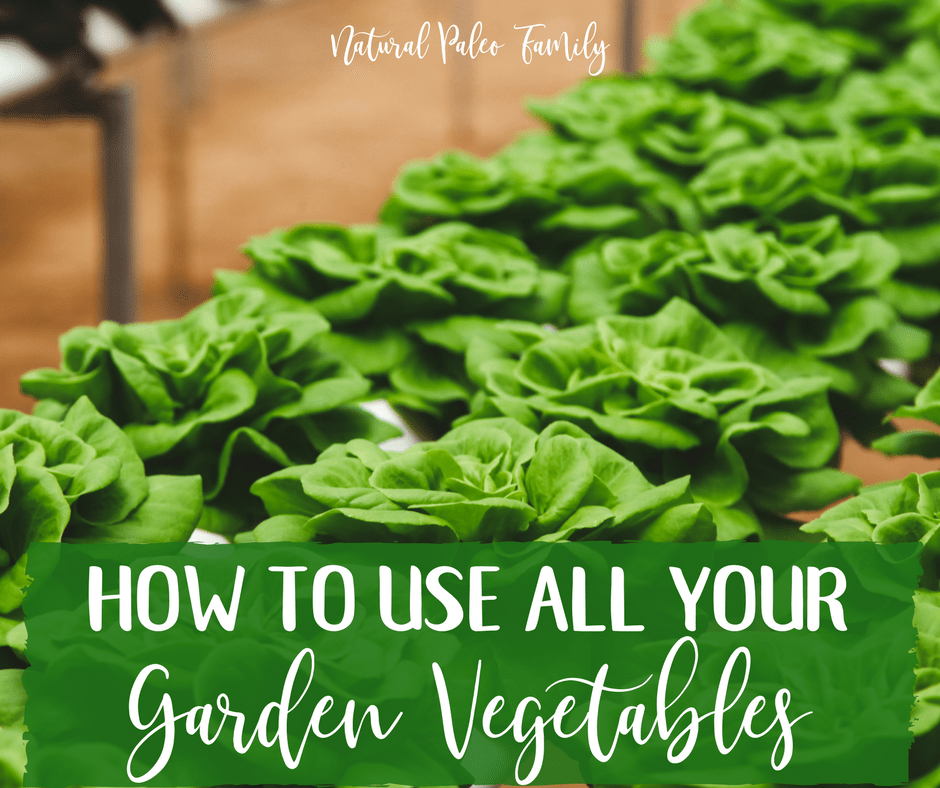 Growing a garden is a fantastic way to guarantee access to the freshest, most nutrient dense food for nourishing your body; and using garden vegetables can really help speed up healing from chronic illness.  But you have to make sure you use what you grow; if you don't, it will all go to waste.