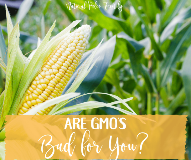 Are GMO's Bad for You?