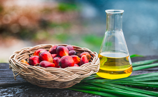 Palm Oil – sources health benefits nutrients uses and ...
