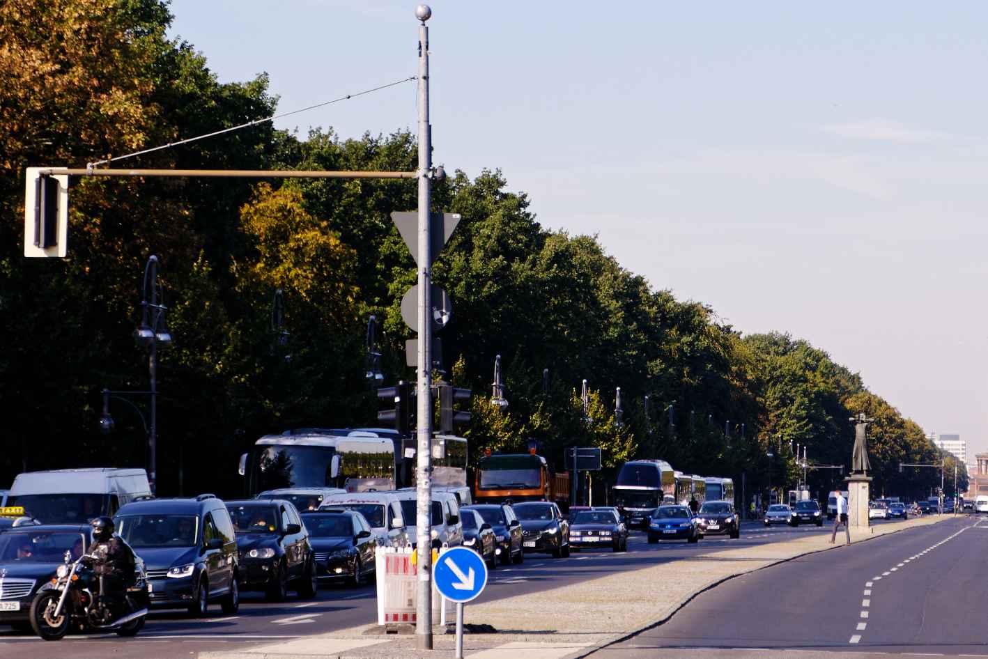 Carsharing für mehr Nachhaltigkeit. Weniger Autos, mehr Natur.