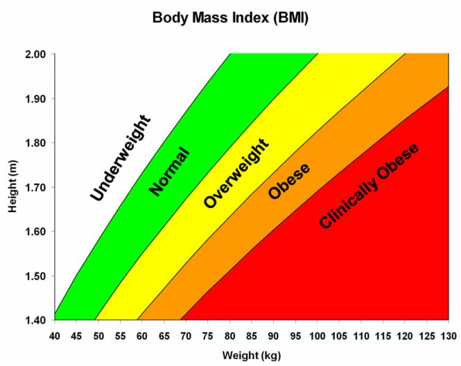 pictures showing body fat percentage