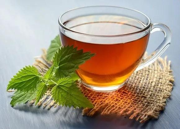 Uses of basil-Tea