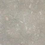 Sea Grass Limestone Tile