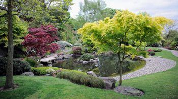 giardini_acqua